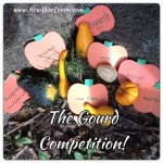 The Great Gourd Competition!