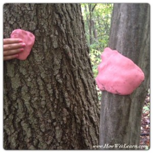 how we learn through a Playdough Nature Walk