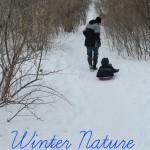 Winter Nature Walk Ideas