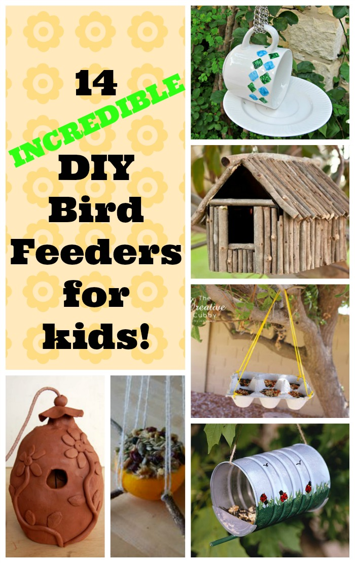 a collection of DIY bird feeders for kids