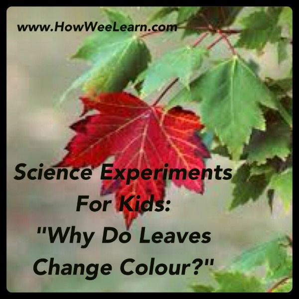 science experimetns for kids
