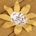 Weaving Sunflower Seeds