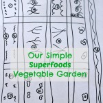 Our Vegetable Garden Layout