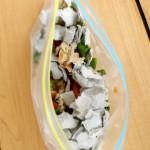 Make a Sandwich Bag Compost