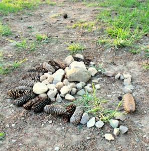 Loose Parts Outside {A Photo on Friday}