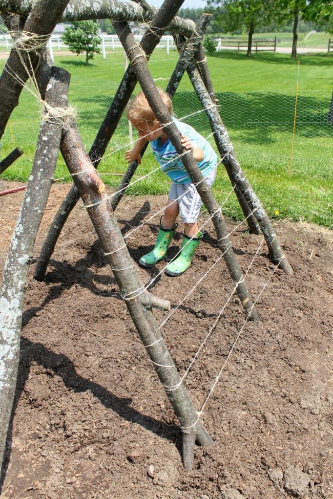 ideas for a pea trellis fort