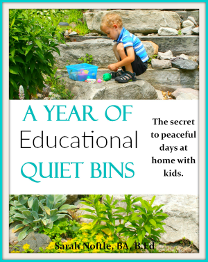 a year of educational quiet bins sidebar