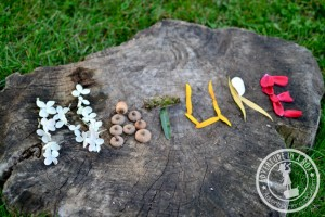 Nature crafts for kids - nature names
