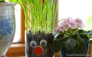 Fun garden ideas - DIY chia pet