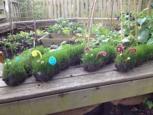 Fun garden ideas - grass caterpillars