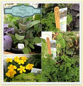 Fun garden ideas - sensory garden