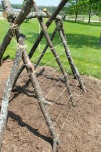 Fun garden ideas - snap pea fort