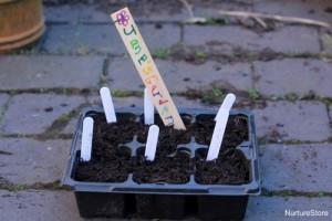 Garden fun - best plants for kids