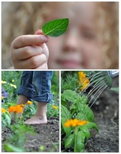 Garden fun - kids picking garden