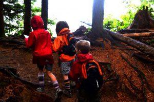 Forest Kindergarten - Letterboxing