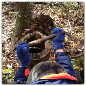 Forest Kindergarten - nature 5 senses
