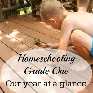 Our Grade 1 Homeschool Year-at-a-Glance