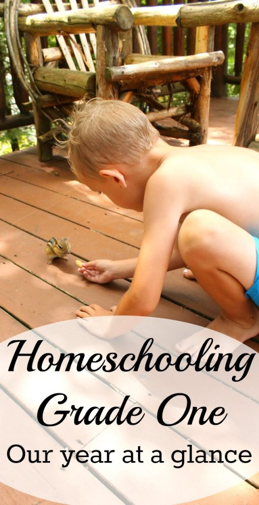 This is our entire year of homeschooling grade one - All details of math, language arts, science, social studies, art and music all with Oak Meadow