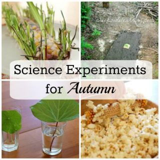 fall-science-experiments-square