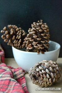 making-potpourri-with-kids-cinnamon-pinecones