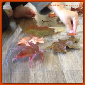 Fall Crafts
