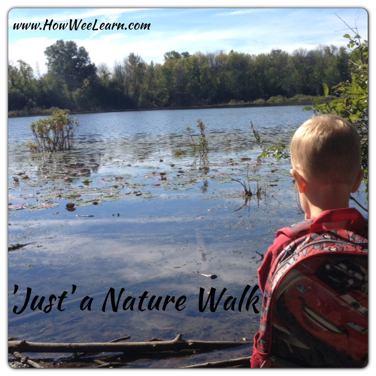 how we learn nature walk ideas for kids
