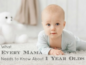 What every Mama needs to know about One Year Olds