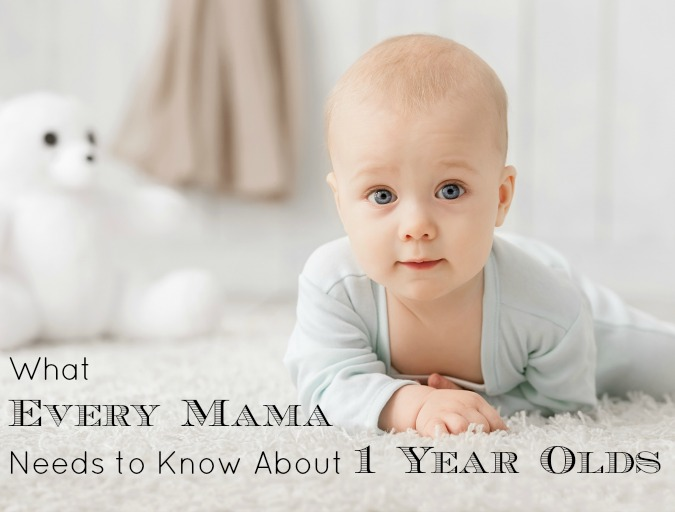 what every mama needs to know about one year olds how wee learn