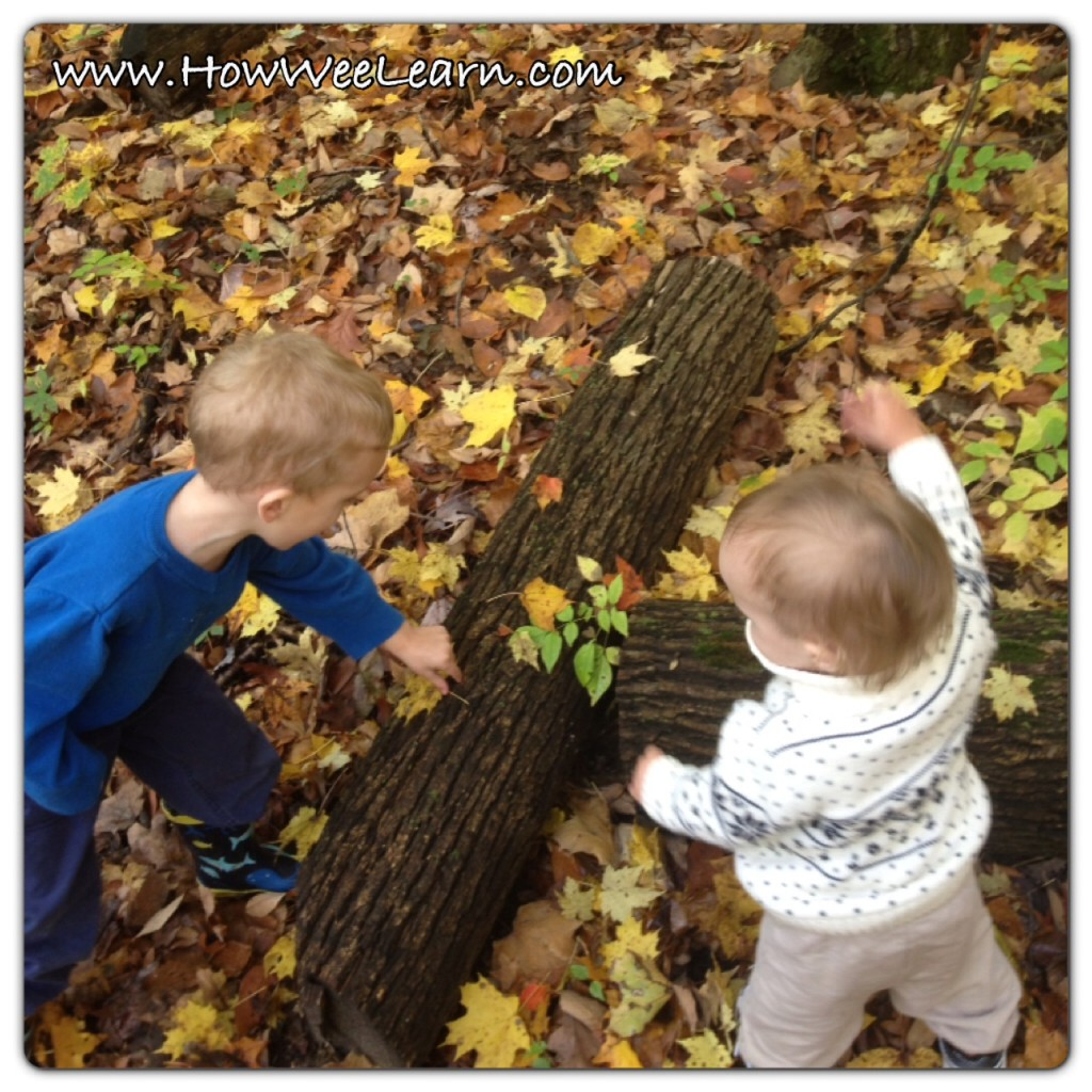 natural language development activities for toddlers