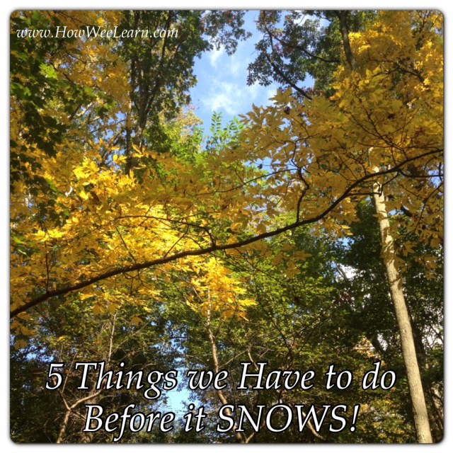 5 things to do before it snows