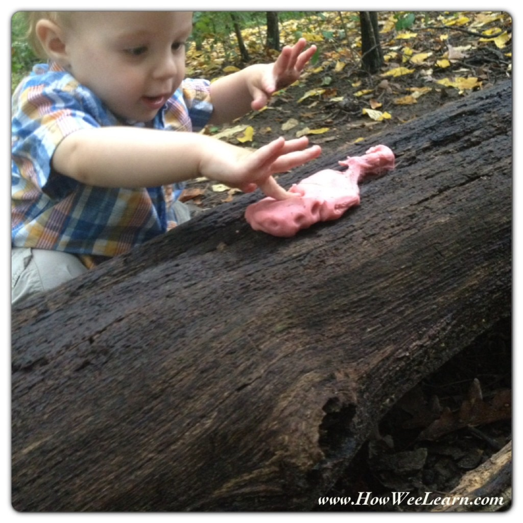how we learn throug nature activities