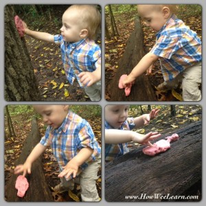 Playdough Nature Walk