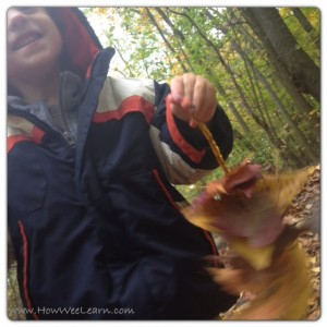 Nature Walk Ideas for Kids: Leaf Sewing