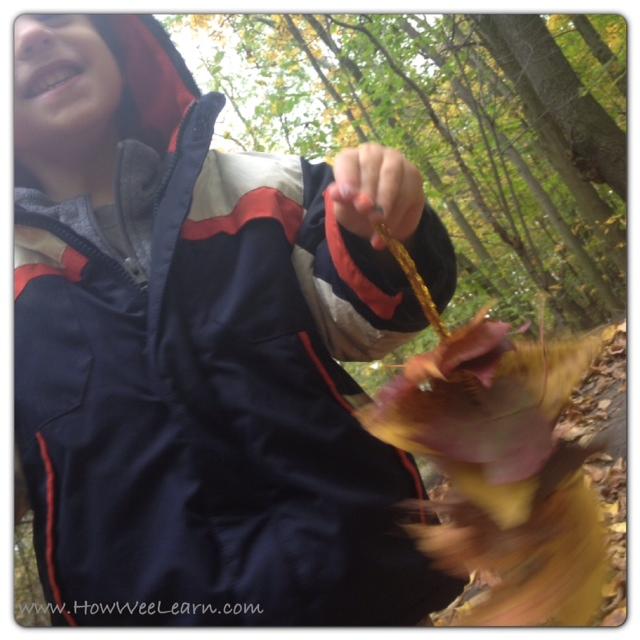 nature walk ideas for kids