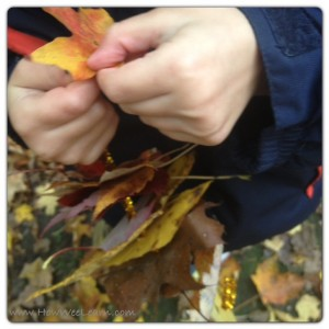 nature walk for preschoolers