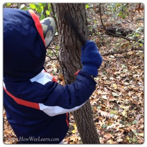 nature education exploring the 5 senses