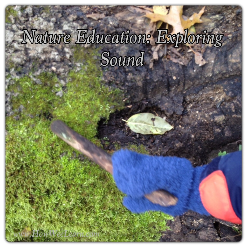 Nature Edcuation exploring the 5 senses