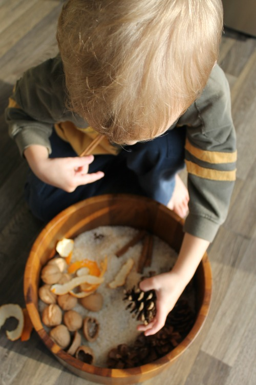 Sensory Activities for Toddlers - taking items from nature with various textures creates a quick and simple sensory box