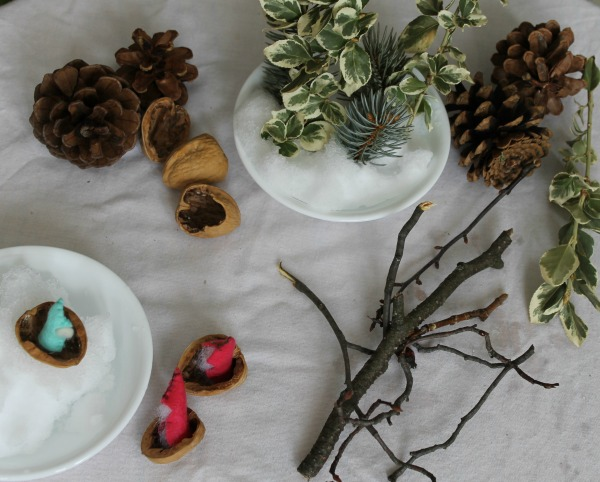 winter nature items on a table how we learn