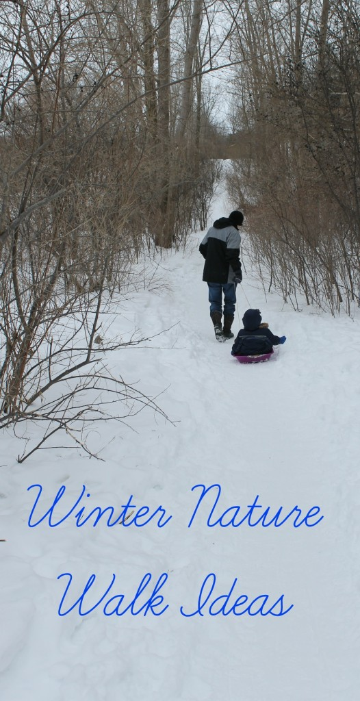 hiking with kids in the winter