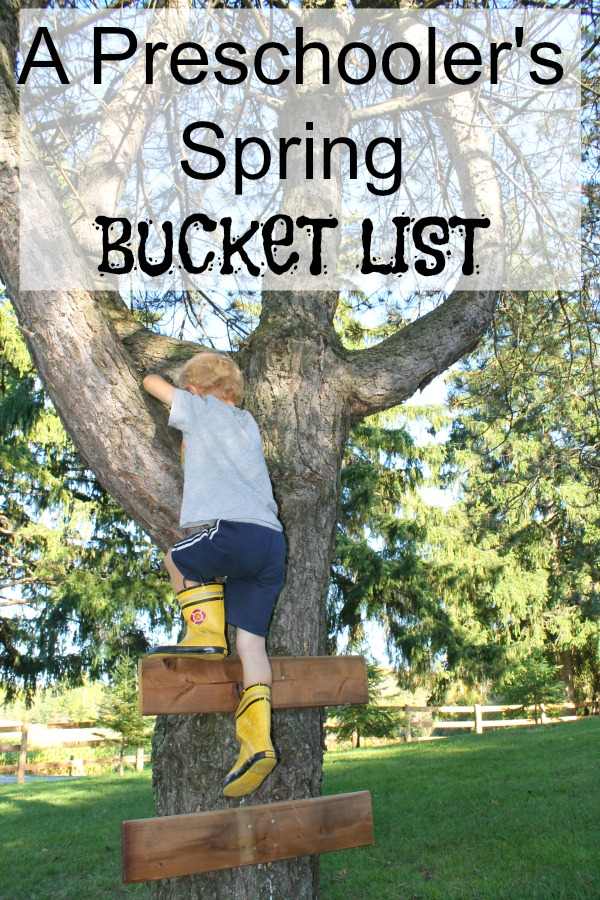 A preschoolers climbing a tree, one of our outdoor spring bucket list activities for preschoolers