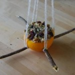 Diy bird feeders for kids to make