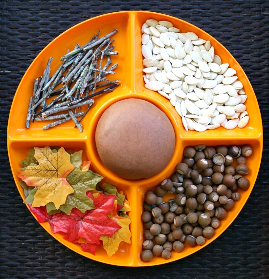 playing with seeds activities for kids