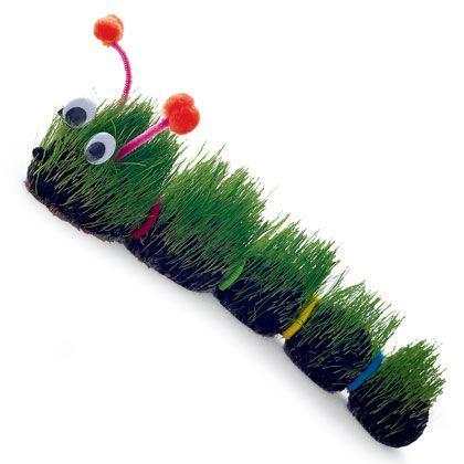 seed activities for preschoolers