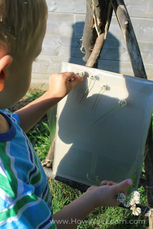 child putting flowers on contact paper on an outdoor easel
