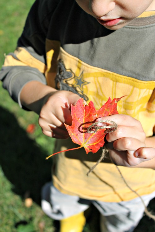 fall leaf crafts for kids, how we learn