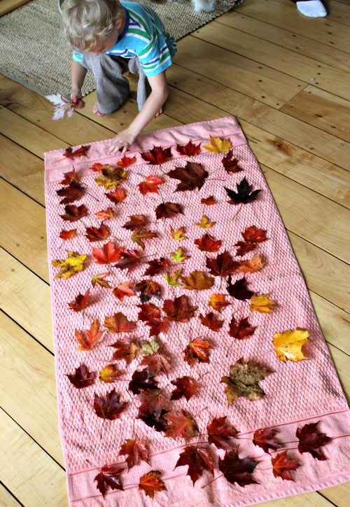 how we learn to preserve leaves with kids
