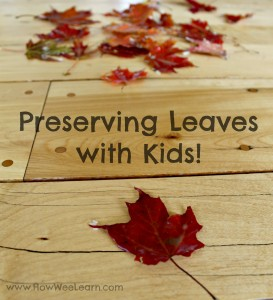 Preserving Leaves with the Little Ones
