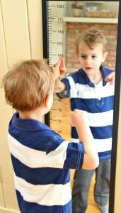 measuring mirror