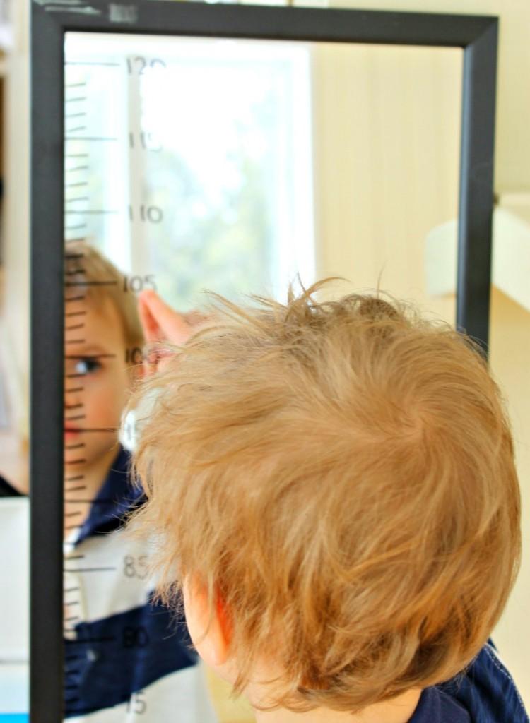 measuring mirror 5